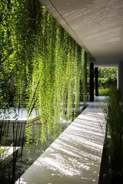 A hanging oasis pure spa by mia design studio in vietnam livin spaces for Hanging gardens of babylon definition