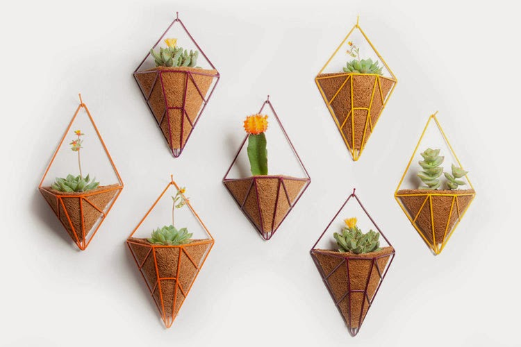 The Hedge planter Collection by Cora Neil
