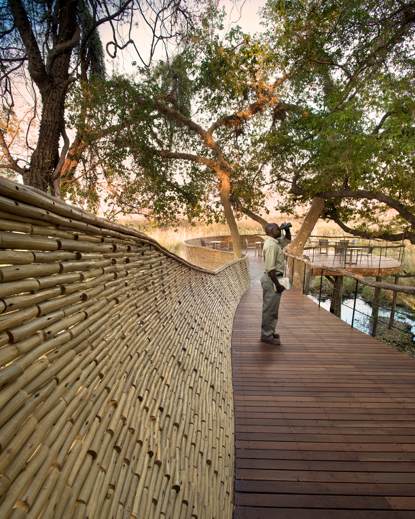 nicholas-plewman-architects-sandibe-okavango-safari-lodge-designboom-10