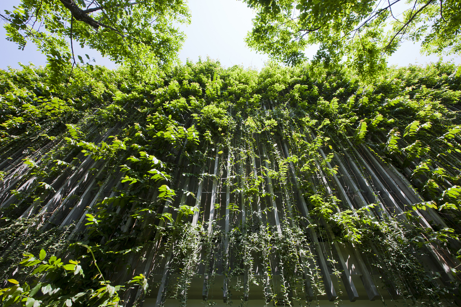 A Green Oasis The Babylon By Vo Trong Nghia Architects