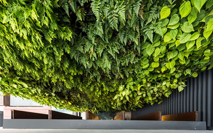 GreenWall_House_19